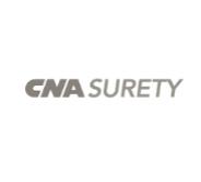 CNA:WEB:GREY copy